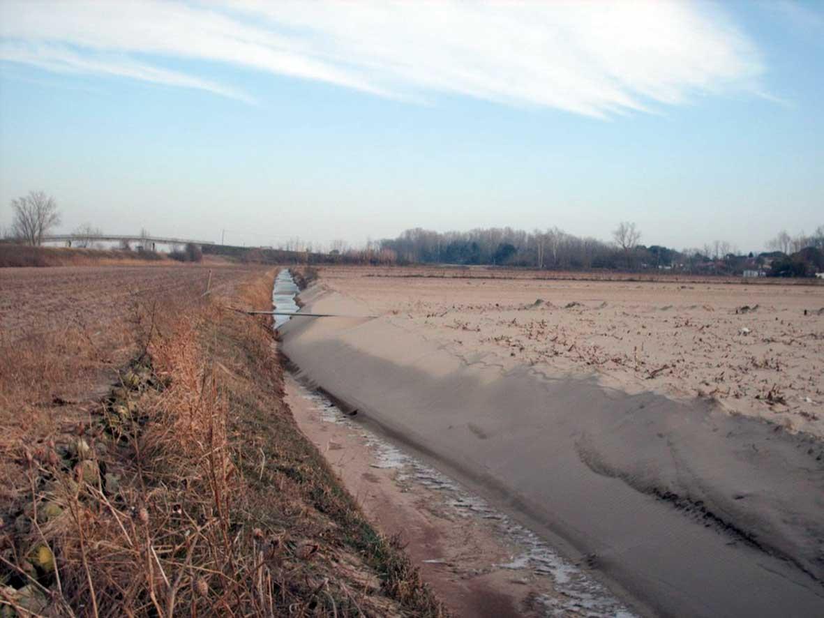 coldiretti rosolina sabbia in campi