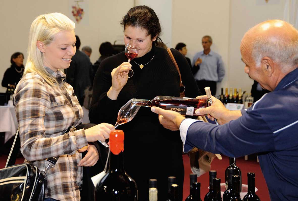 degustazioni vino