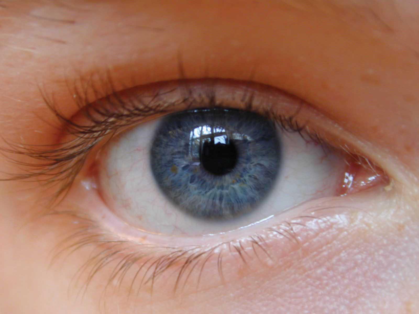 giornata mondiale della vista visite specialistiche