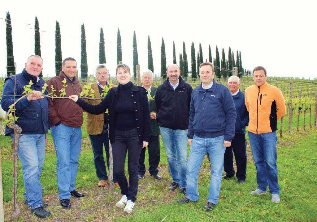 bardolino custoza commissione tecnica vitivinicola 1
