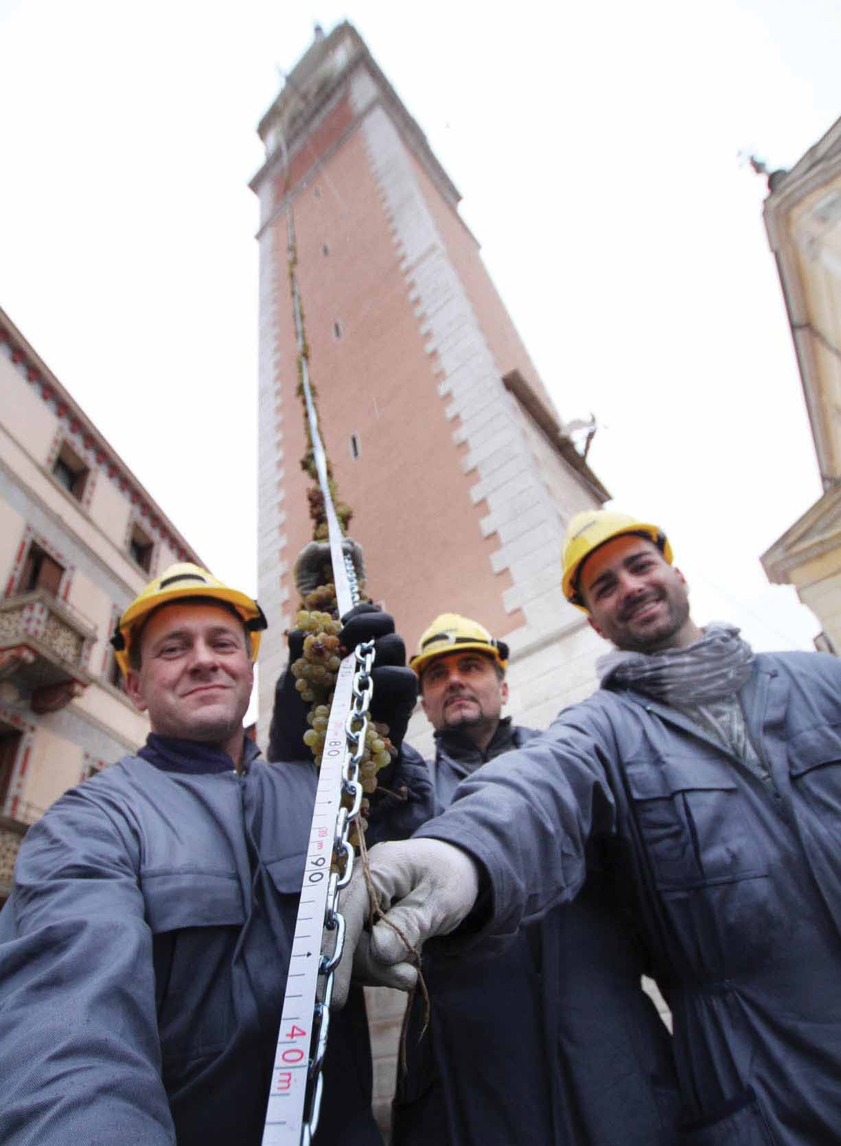 Torcolato 2013 treccia.uva.campanile.torcolato