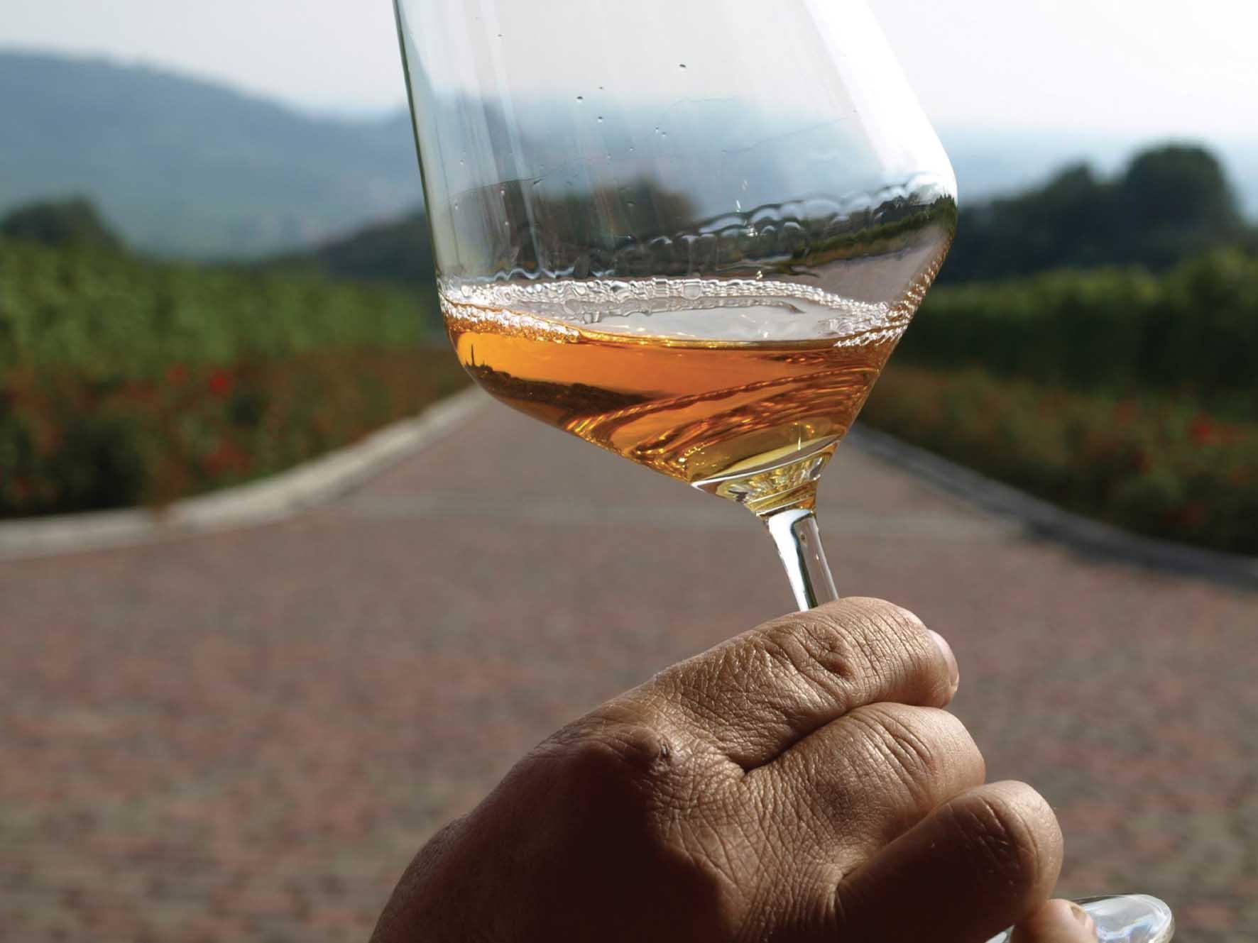 Strada del vino Soave particolare vino 1