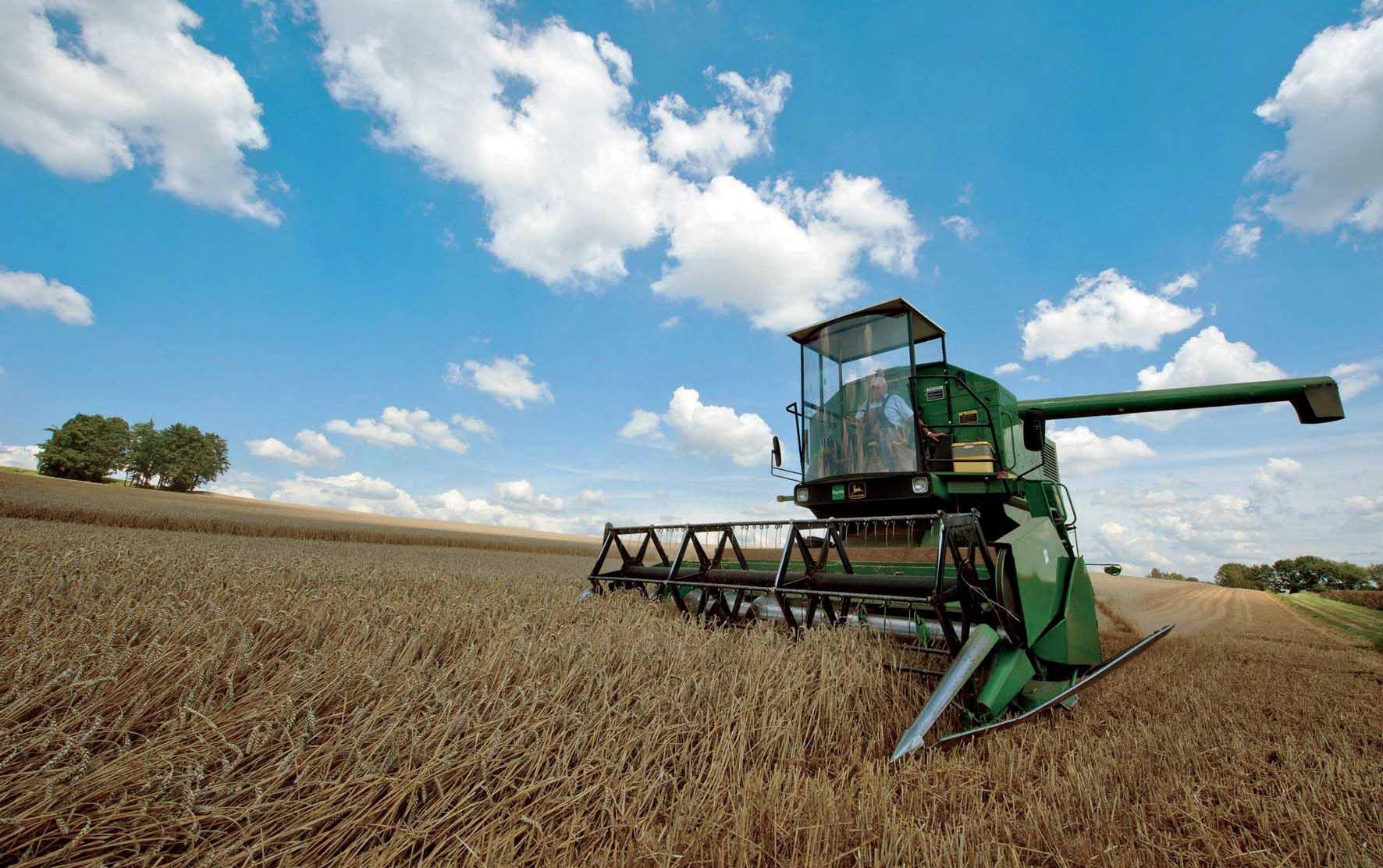 terreni agricoli agricoltura-metitrebbia-grano-ilnordest
