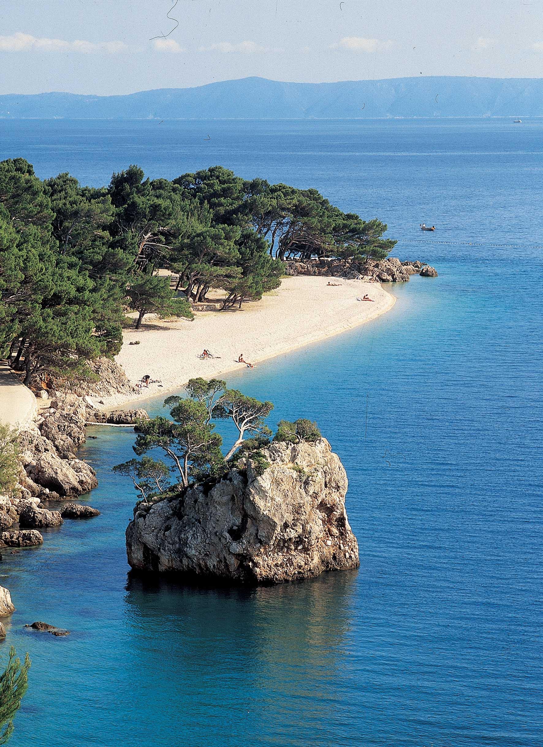 croazia-spiaggia-penisola-alberi-ilnordestquotidiano