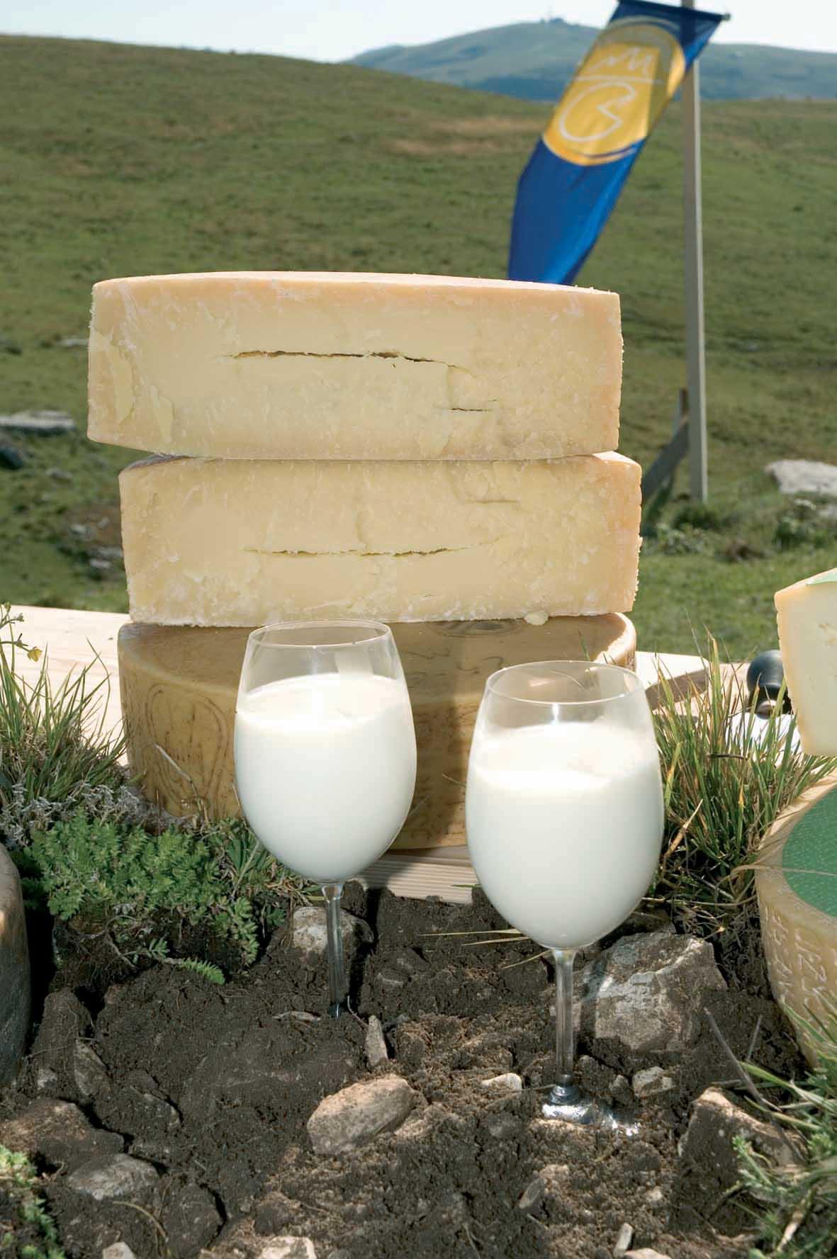 Olimpiadi formaggio bicchieri latte forme formaggio terra