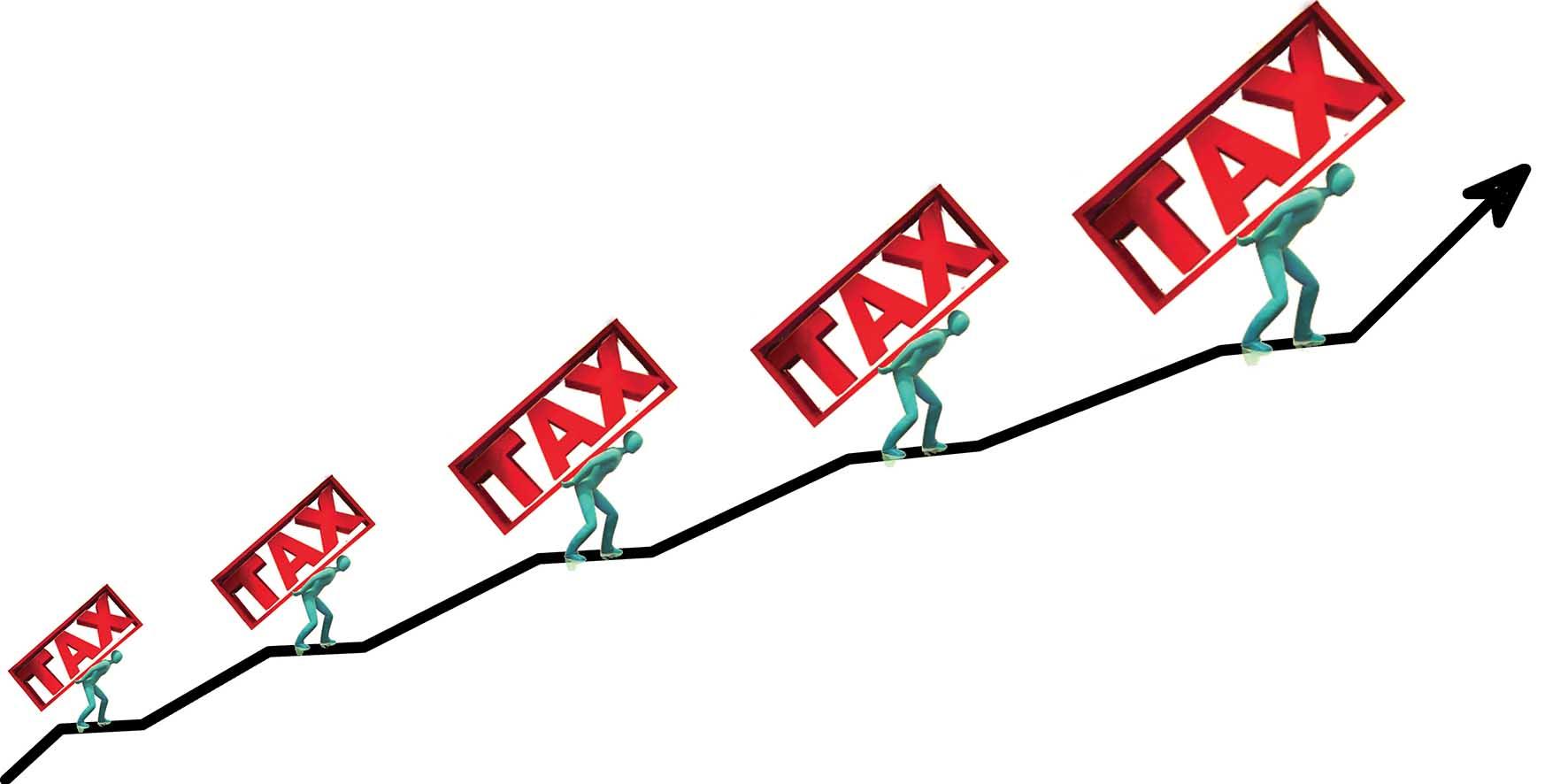 grafico crescita peso tasse