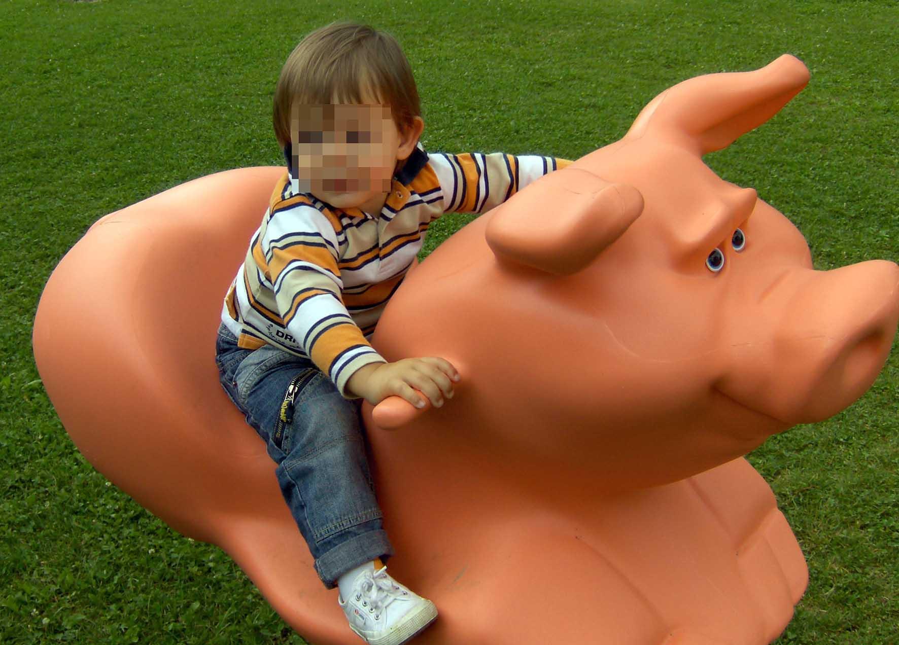 bambino su maialino