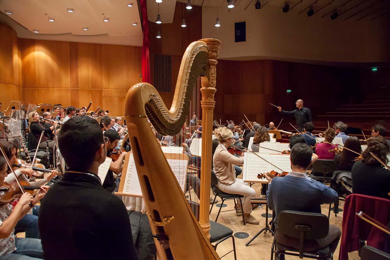 image haydn orchestra