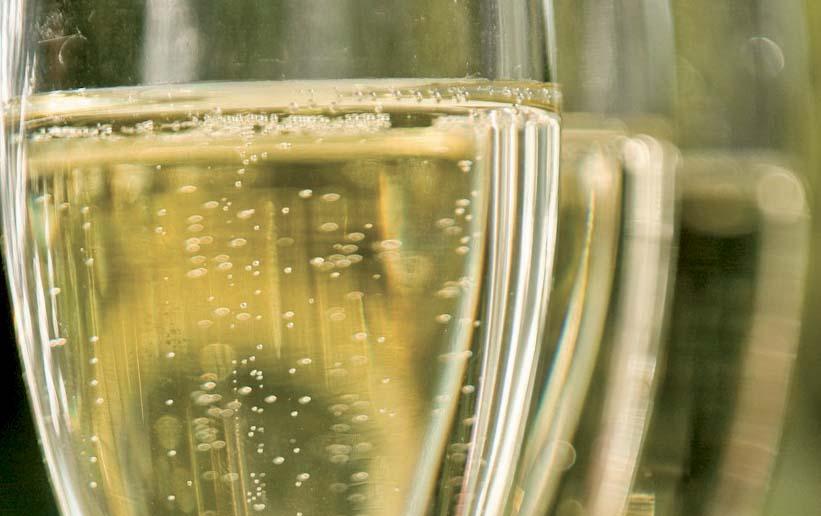 bicchieri prosecco FotoPaoloSpiga bassaris 1