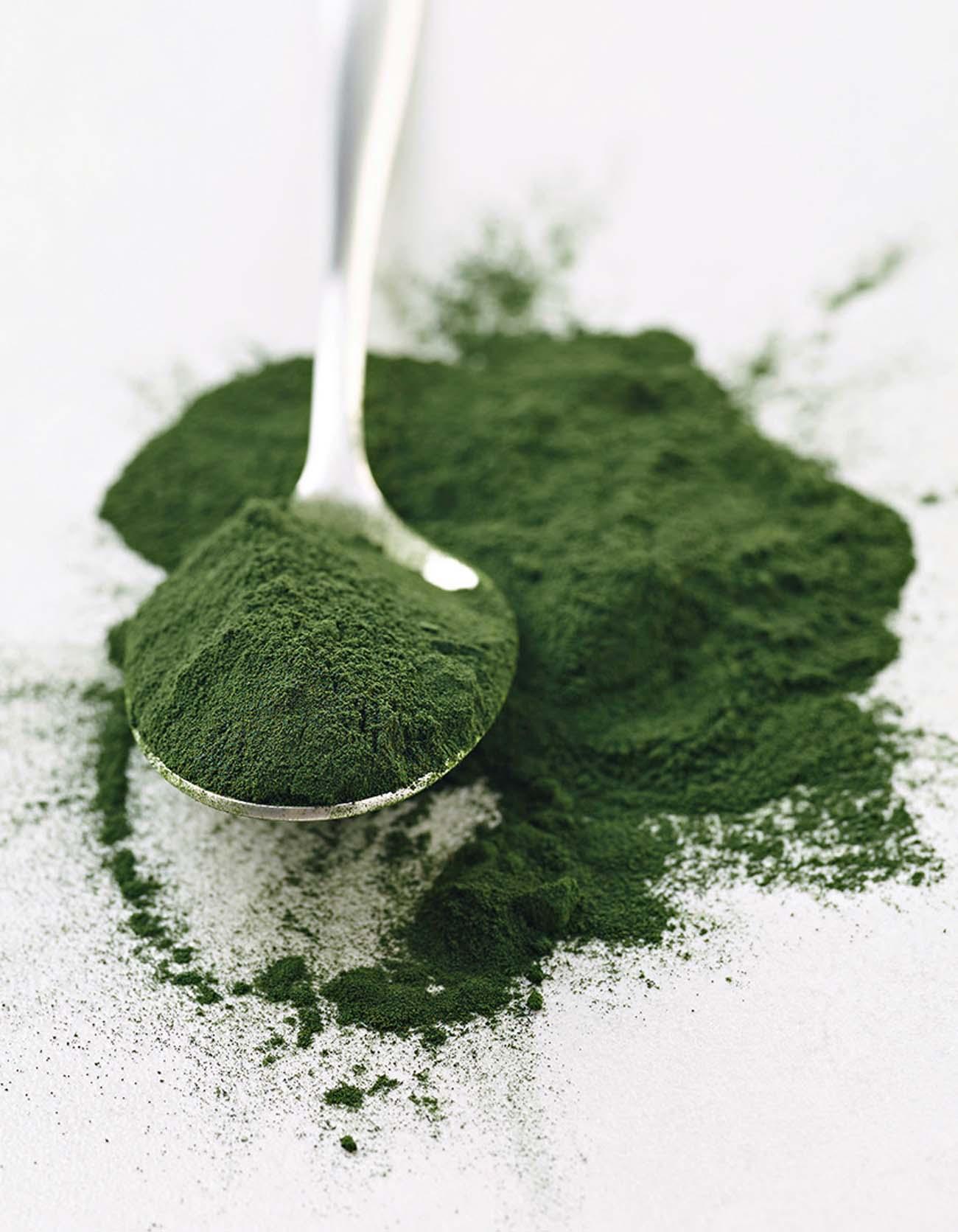 Alga spilurina in polvere cucchiaio