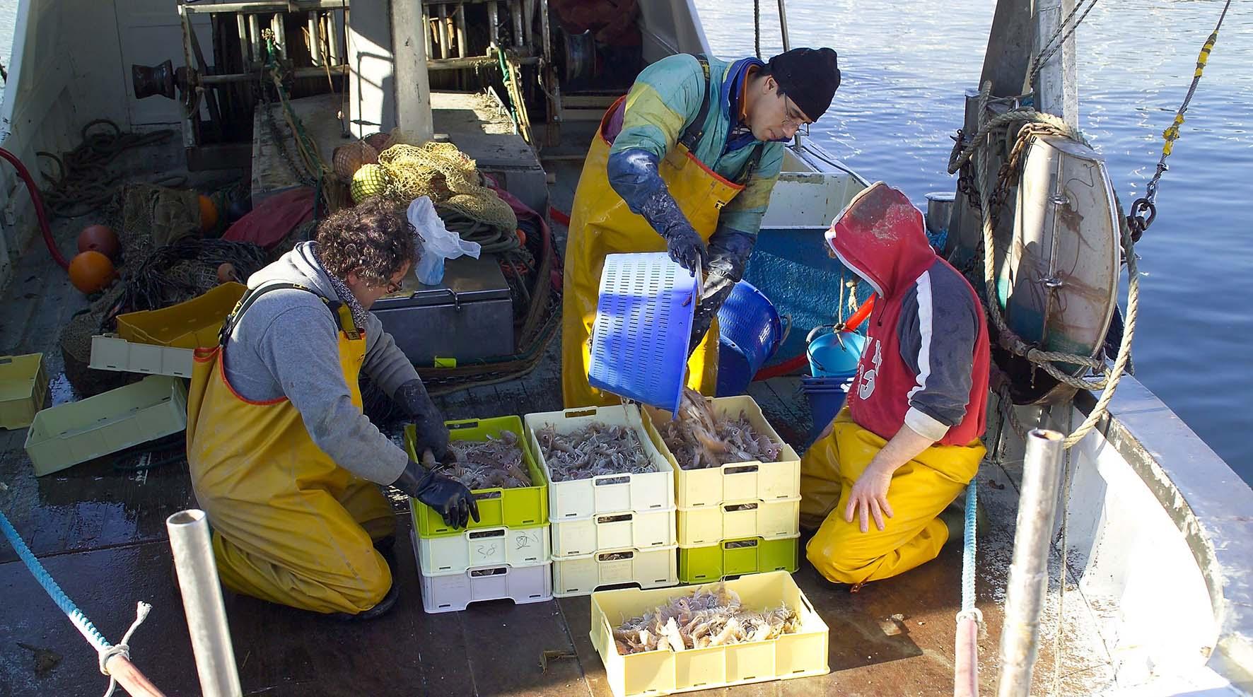Cesenatico Pescatori e pescato
