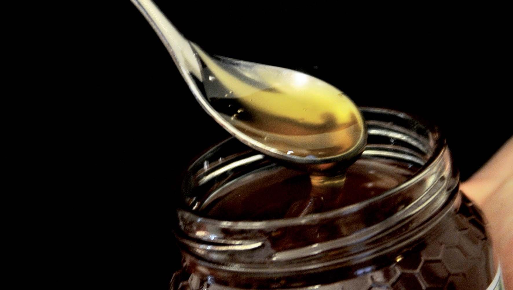 CCIAA TN miele cucchiaio vaso