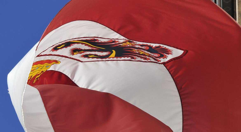 bandiera trentino al vento