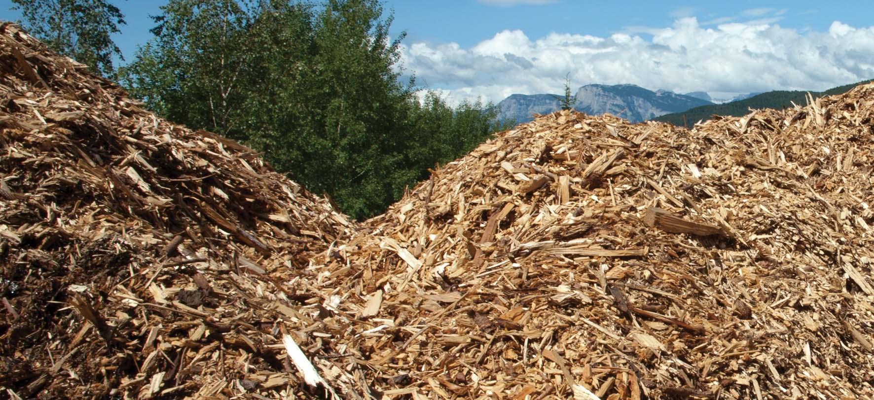 energia pulita Ivalsa biomassa cippato tronchetti 3