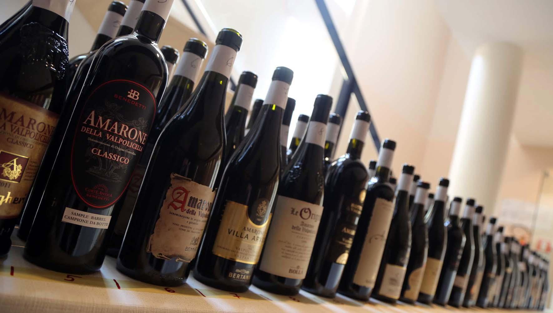 consorzio di tutela vini valpolicella