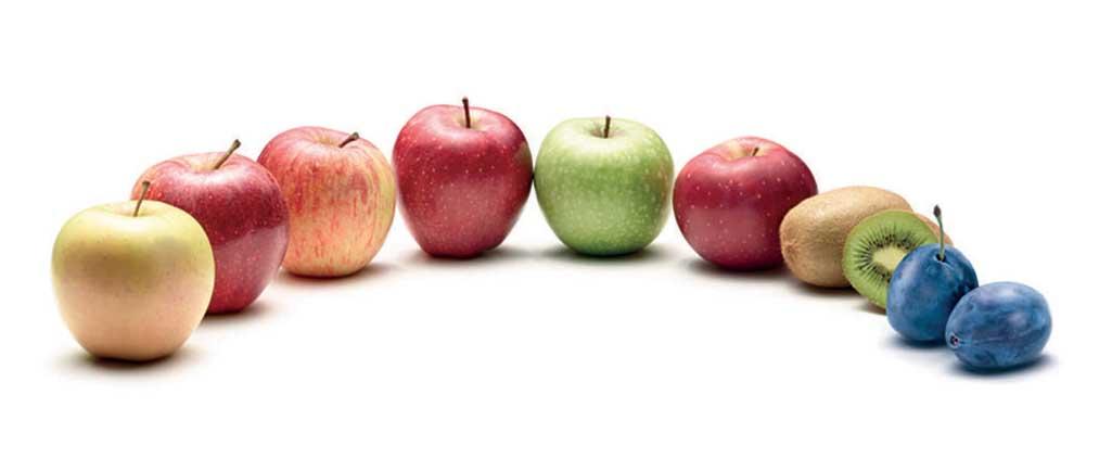 composizione mele kiwi prugna
