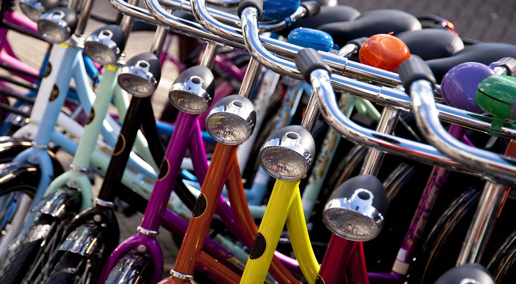 bonus bici biciclette parata vari colori