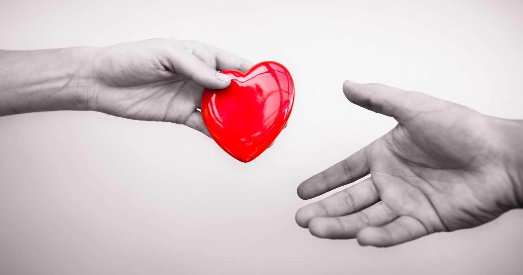 donazione di organi