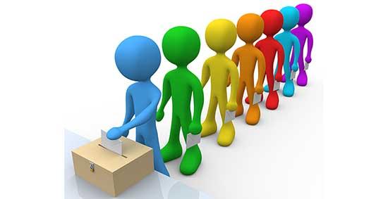 elezioni urna grafica elettori