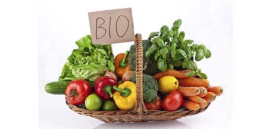 Rapporto agroalimentare cesto agricoltura biologica ortaggi