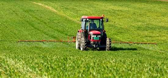 Rapporto agroalimentare Emilia Romagna economia agricola