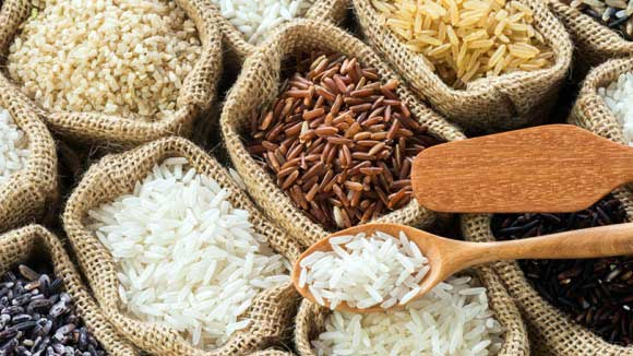 importazioni di riso