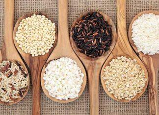 riso varietà tipologie
