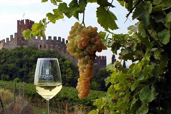 vino soave bicchiere