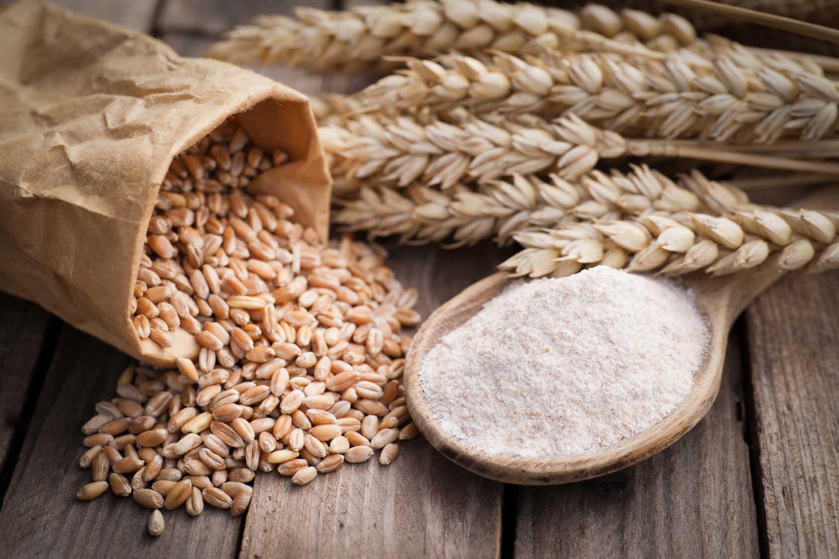 Secondo Coldiretti dal blocco all impiego di glifosato nella coltivazione  del grano germogliano 20.000 nuovi posti di lavoro 5877ca911fa2