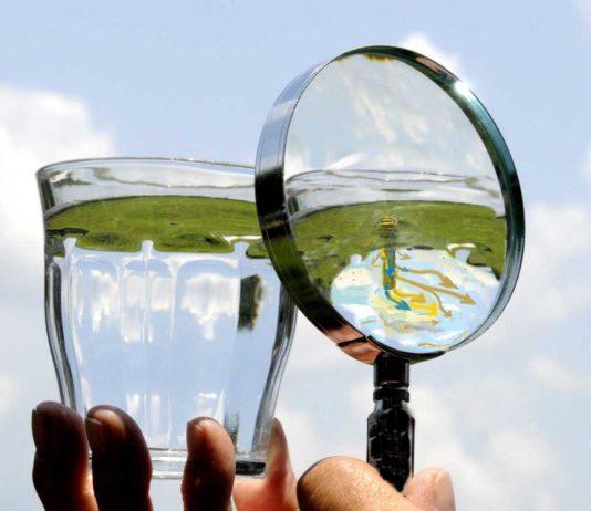 contrgiornata mondiale dell'acqua olli pesticidi acque arpa fvg