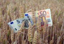 aziende agricole dell'emilia romagna