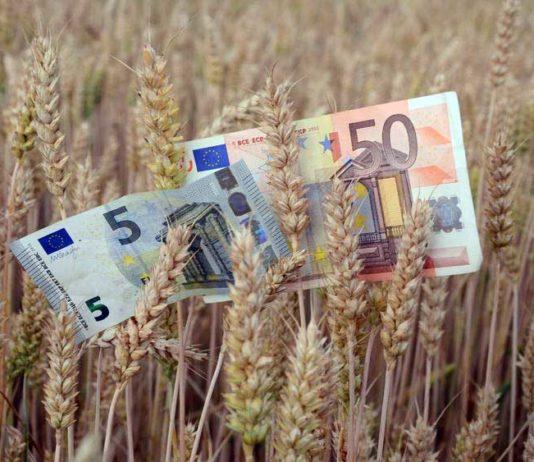 Agri Italy Platform aziende agricole dell'emilia romagna