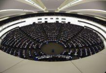 elezione parlamento europeo