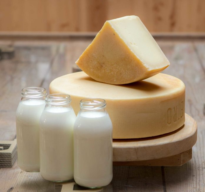 prodotti lattiero caseari