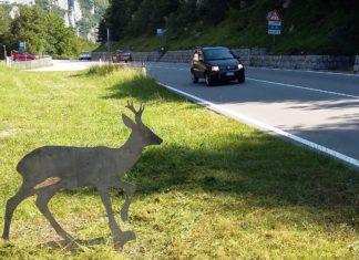 segnaletica a tutela della fauna selvatica