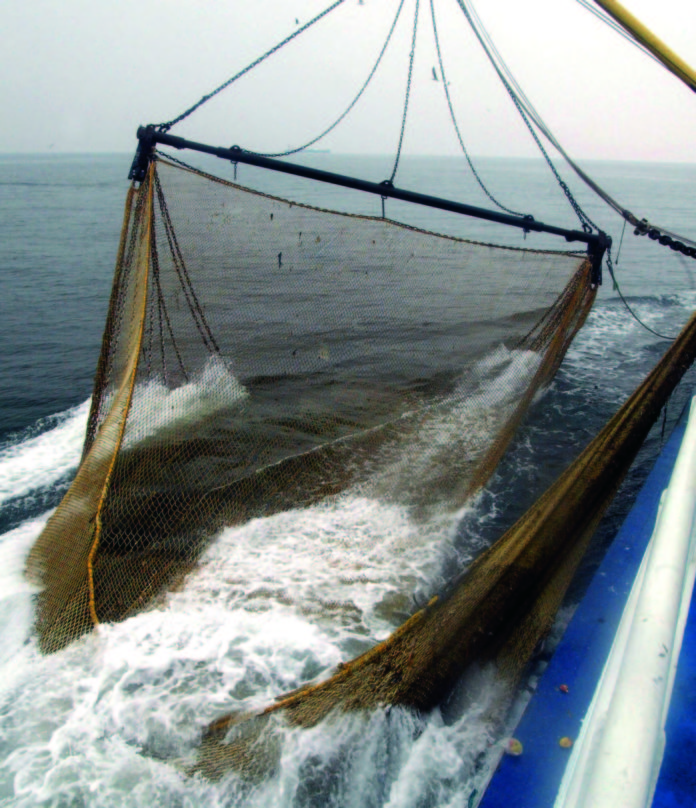 sostegno per le imprese ittiche