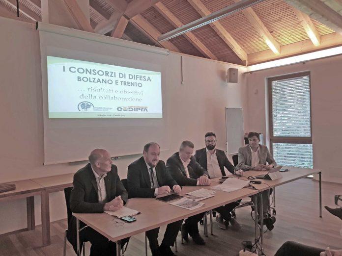 Consorzio di difesa di Trento e Bolzano