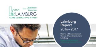 laimburg report