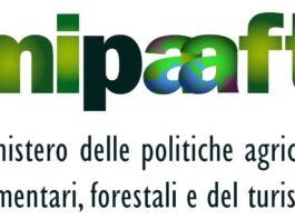 mipaaft