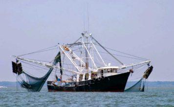 pesca Emilia Romagna