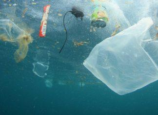 divieto all'uso della plastica usa e getta