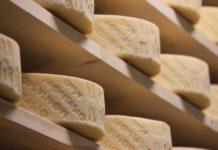 rilancio del settore lattiero-caseario