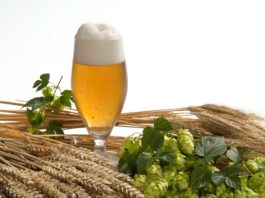 birra agricola