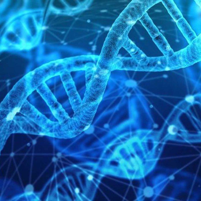 mappatura dei genomi del cancro