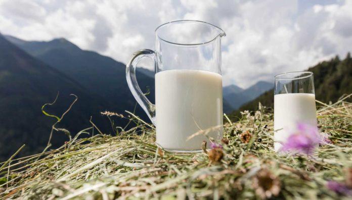 mercato latte crudo mercato latte crudo latterie alto adige