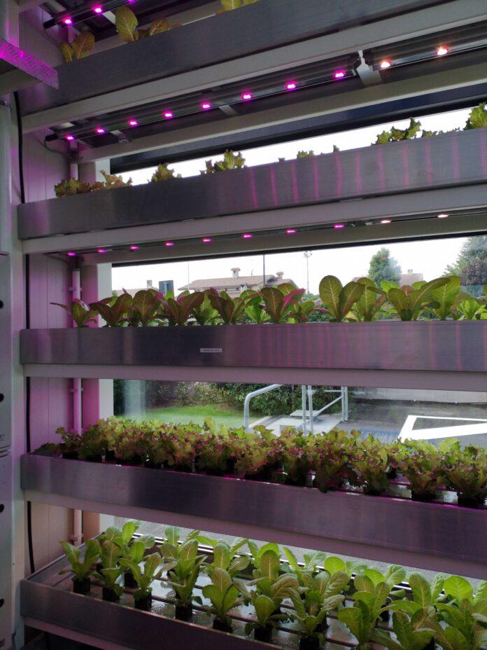vertical farm